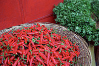 Red Chilies | Port Louis | Mauritius